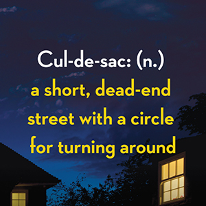 Cul-de-sac: (n.) a short, dead-end street with a circle for turning around;joy fielding;thriller