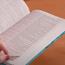 two column layout, double column, jesus christ's words in red, scripture references, clean Bible