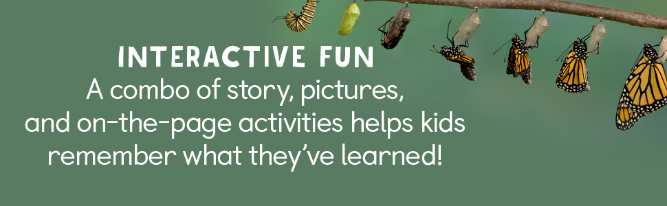 bug books for kids,insects,pop up book,bugs,spiders